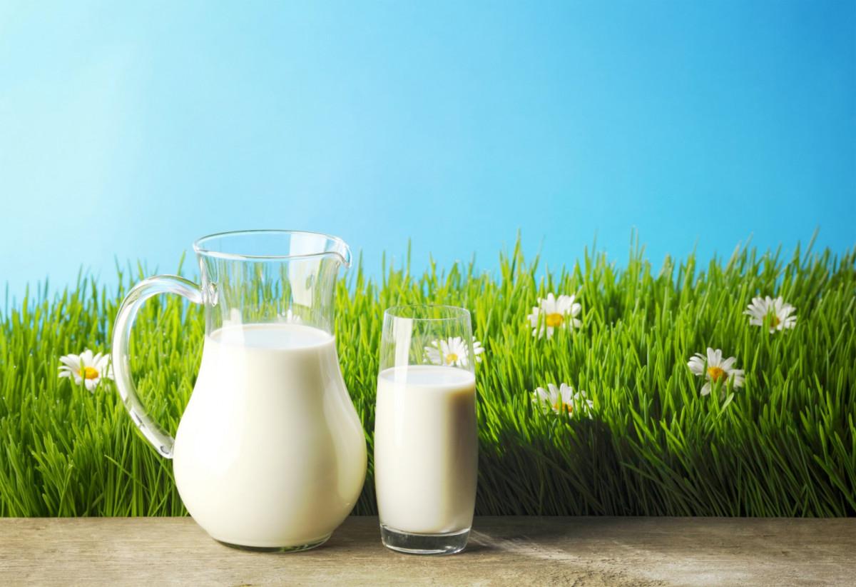 süt ile ilgili görsel sonucu